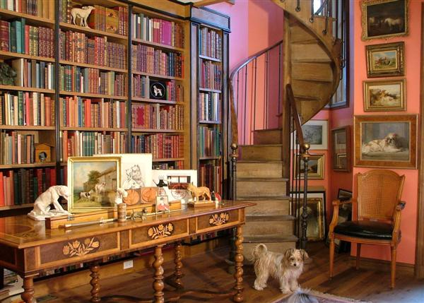 ~ Biblioteca ~ Home-library-with-staircase-and-dog
